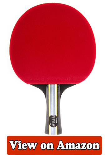 10 Best Ping Pong Paddle Feb 2018 Buyer S Guide And
