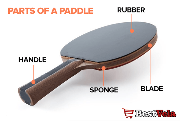 ping pong paddle parts