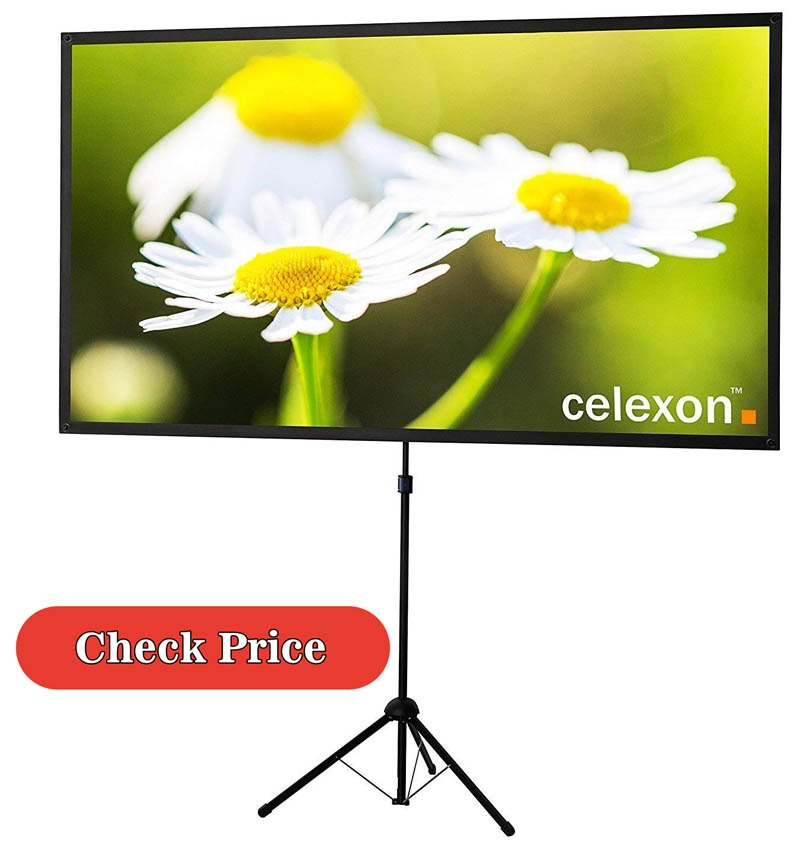 celexon projector screen