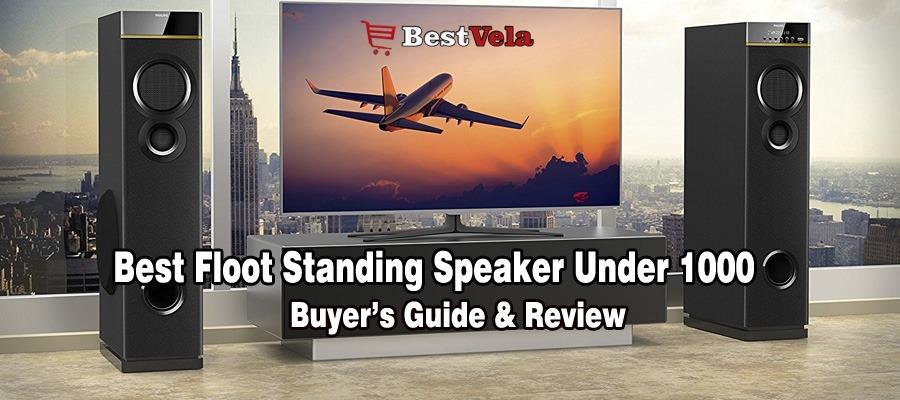 Best Floor Standing Speakers under 1000