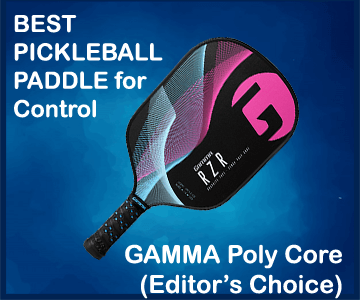 best pickleball paddle for control (1)